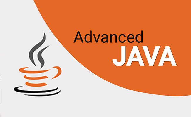 Java 1 Professional Java1P